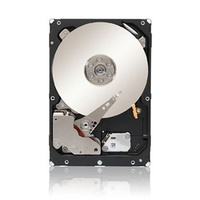 Seagate Constellation ES 2TB (ST2000NM0011)