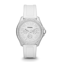 Fossil Cecile AM4487