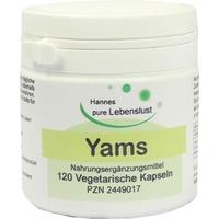 Yams Wurzel