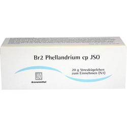 Br2 Phellandrium cp JSO