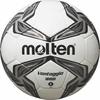 Molten F4V1700-K weiß/silber 4