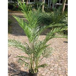 Kunstpflanze PALME(H 150 cm)