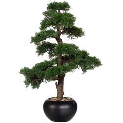 Kunstpflanze Bonsai Zeder Bonsai, Creativ green, Höhe 70 cm, im Keramiktopf