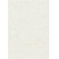 Zanders Elefantenhaut Office 88001576 DIN A4 110 g/m² 100 Blatt Weiß
