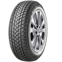 GT Radial Winterpro 2 205/60 R16 96H