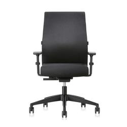Interstuhl Ergonomic 139RS Ergonomischer Home Office Stuhl mit Polsterrücken
