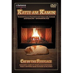 Katze am Kamin - DVD  Filme