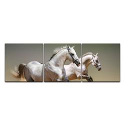 Bilderdepot24 Leinwandbild, Leinwandbild - Pferde II 90 cm x 30 cm