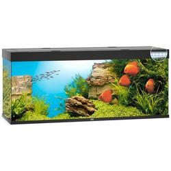 JUWEL Rio 450 LED Aquarium, 450 Liter, schwarz
