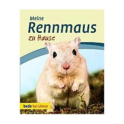 Meine Rennmaus zu Hause. Madlen Wendt  - Buch