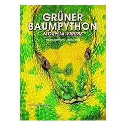 Grüner Baumpython. Markus Motz  Marcel Hoffmann  - Buch