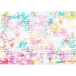 Consalnet Vliestapete BUNTE ZIEGEL, grafisch, in verschiedenen Größen 3,68 m x 2,54 m