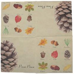 Linoows Papierserviette 20 Servietten Früchte und Blätter heimischer Bäume, Motiv Früchte und Blätter heimischer Bäume