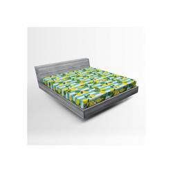 Spannbettlaken Soft Dekorativer Stoff Bettwäsche Rund-um Elastischer Gummizug, Abakuhaus, Zitronen Zitronenblüten Blätter Kunst 160 cm x 200 cm