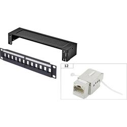 Renkforce KS10 12 Port Netzwerk-Patchbox CAT 6a 1 HE