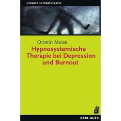 Hypnosystemische Therapie bei Depression und Burnout: Buch von Ortwin Meiss