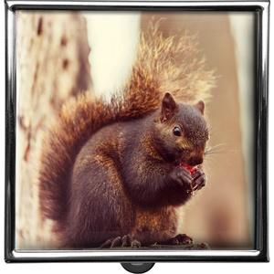 metALUm Pillendose quadratisch 2 Fächer Eichhörnchen #0006