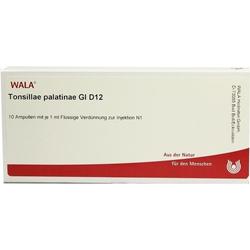 TONSILLAE PALATINAE GL D12