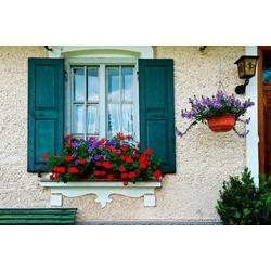 Fototapete Bavarian Window, glatt 3,50 m x 2,60 m