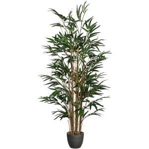 Kunstpflanze Bambus Bambus, Creativ green, Höhe 120 cm