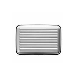 fabrizio® Etui Sicherheits-Geldkartenetui silber