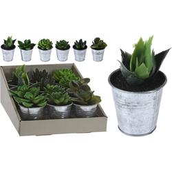 Kunstpflanze PLANT (DH 6x10 cm)