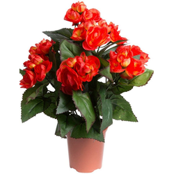 Kunstblume Begonie im Topf Begonie, Botanic-Haus, Höhe 33 cm
