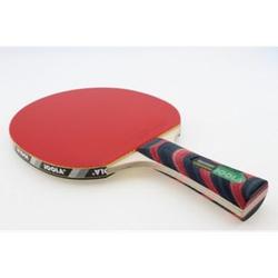 JOOLA Tischtennisschläger Rosskopf Action