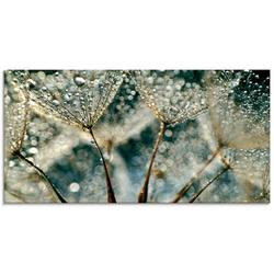 Artland Glasbild Pusteblume Regenschauer, Blumen (1 Stück) 100 cm x 50 cm x 1,1 cm