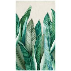 BODENMEISTER Fototapete Bananenblätter Dschungel grün, Rolle 2,80x1,59m grün