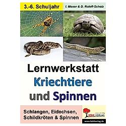 Lernwerkstatt Kriechtiere und Spinnen. Dorle Roleff-Scholz  Iris Moser  - Buch