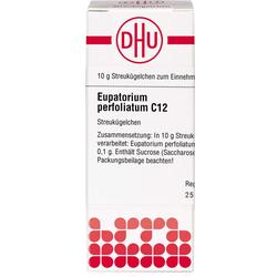 EUPATORIUM PERFOLIATUM C 12 Globuli 10 g