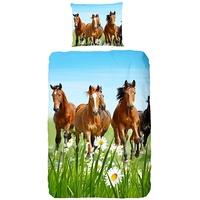 Good Morning Pferde multi (135x200+80x80cm)