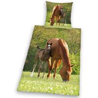 Herding Young Collection Pferd Linon (135x200+80x80cm)