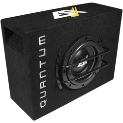 ESX Subwoofer (ESX QSB6 QUANTUM QSB - 16,5cm / 6,5