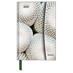 Botanical 2021 - Magneto Diary