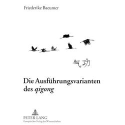 Die Ausführungsvarianten des qigong als Buch von Friederike Baeumer