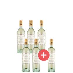 5+1 Doppio Passo Grillo - Weinpakete