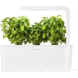 Click and Grow, Blumentopf, Smart Garden