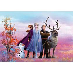Fototapete - Disney Frozen Iconic, 254x368 cm