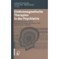 Elektromagnetische Therapien in der Psychiatrie: eBook von