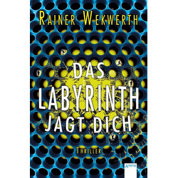 Das Labyrinth jagt dich / Labyrinth Bd.2
