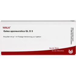 GALEA aponeurotica GL D 5 Ampullen 10 ml