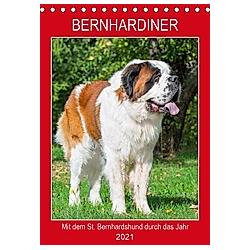 Bernhardiner - Mit dem St. Bernhardshund durch das Jahr (Tischkalender 2021 DIN A5 hoch)