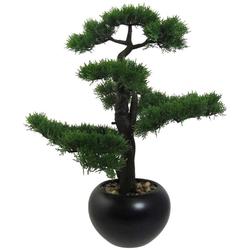 Kunstpflanze Bonsai Zeder Bonsai, Creativ green, Höhe 60 cm, im Keramiktopf