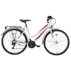 Montana Fahrräder Cityrad