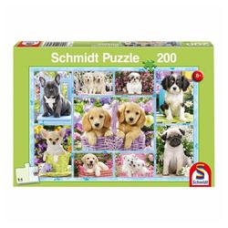 Schmidt Spiele Puzzle Welpen, 200 Puzzleteile