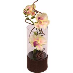 Kunstpflanze Orchidee Orchidee, Höhe 35 cm