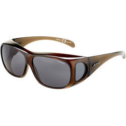 Alpina Sports Sonnenbrille Sunglasses Overview
