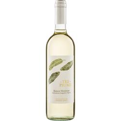 Tre Piume Bianco Veneto IGT 2019 Fasoli Biowein
